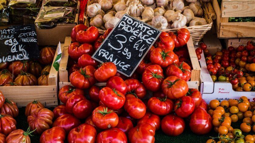 Tomates pour plats provençaux